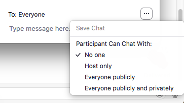 Zoom chat panel